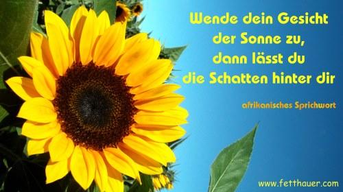 Schöne Sprüche Sonnenblume | wahre sprüche über das leben